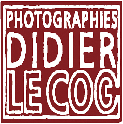 Didier LECOQ Photographies